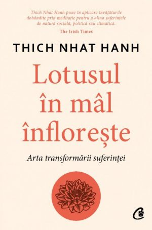 Lotusul in mal infloreste